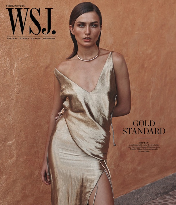 Andreea-Diaconu-by-Josh-Olins-for-WSJ-Magazine-Cover