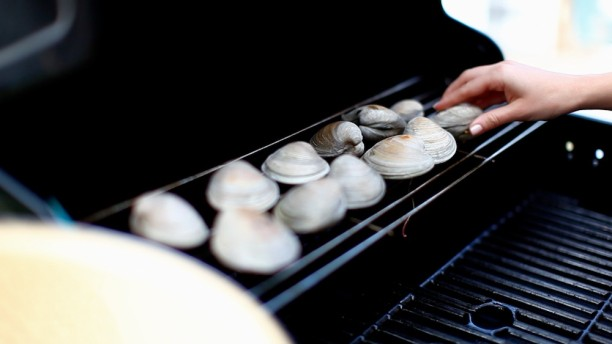 grilled clams with herbed butter 2